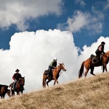 bogong-horse-rides_2-jpeg_0